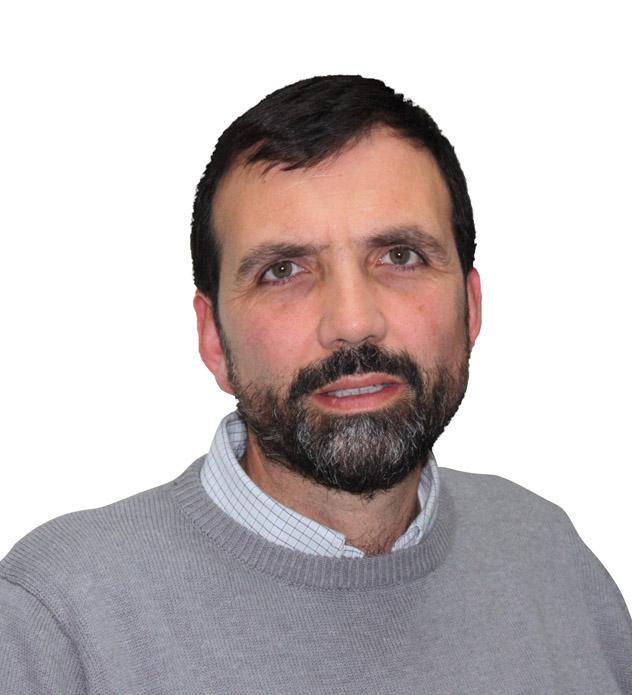 Enrique Lluch Frechina