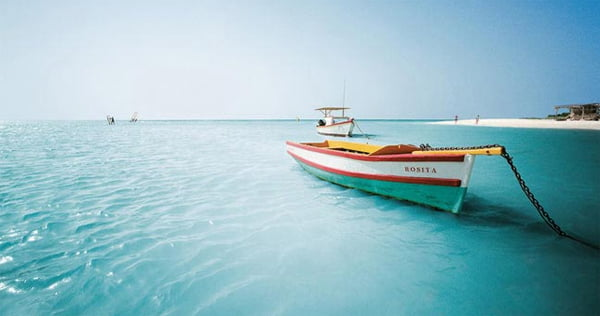 Riu Hotels abre un lujoso hotel sólo para adultos en la paradisiaca isla caribeña de Aruba
