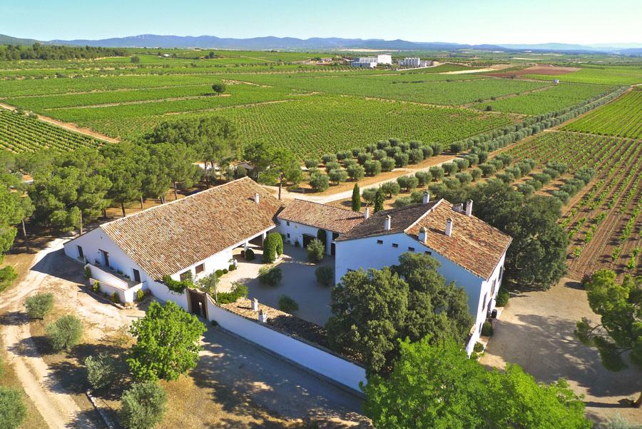 Vicente gand a cuatro generaciones llevando vino de - Bodegas de vino en valencia ...