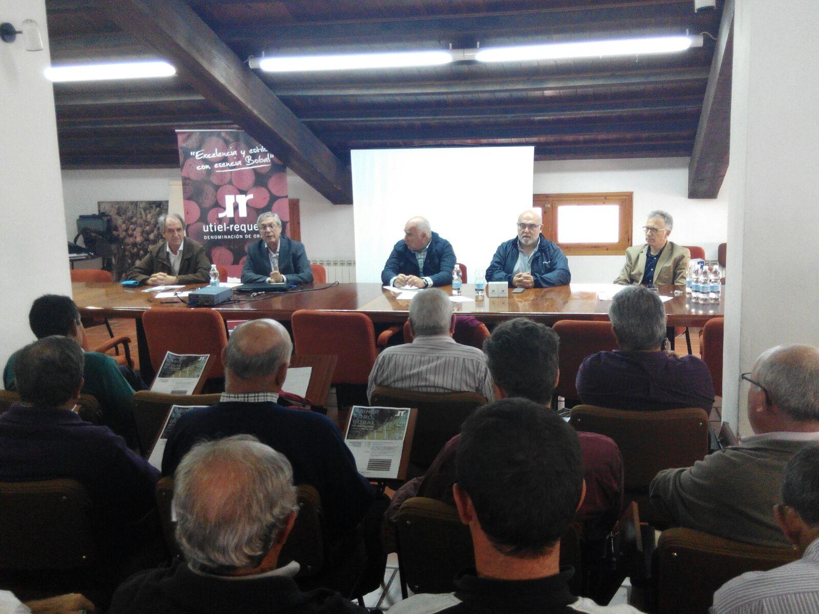 Bodegas cooperativas de Utiel Requena se unen para comercializar 800.000 hl. de vino a granel