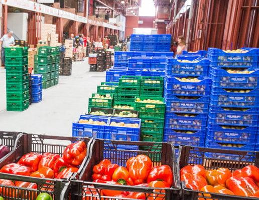 Investigan cómo mejorar los controles sanitarios de los alimentos envasados