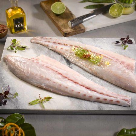 Imagen destacada Frescamar certifica la máxima calidad para su pescado de piscifactoria