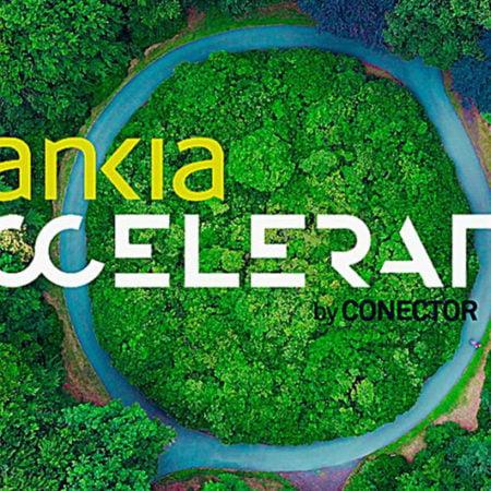 Imagen destacada La sostenibilidad centra la convocatoria de Bankia Accelerator by Conector