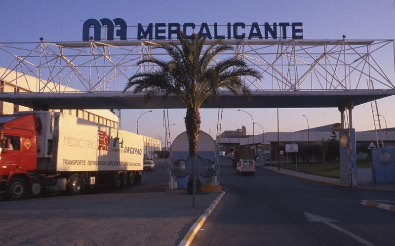 mercalicante-ecologicos