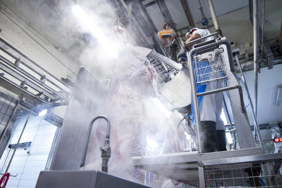 Imagen destacada Los nuevos gestores de la sala de despiece traerán su producción a Mercavalencia