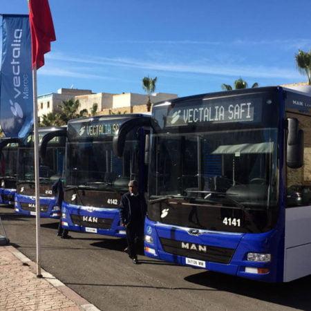 vectalia-buses-safi-flota