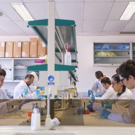 Imagen destacada Psicología, Salud, Físicas, Ingenierías y Tecnología en el 'top' del ranking THE