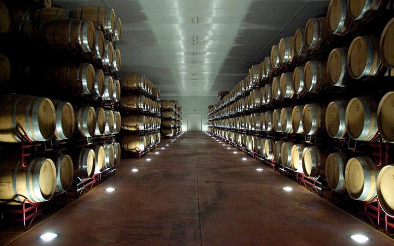 Imagen destacada 38 vinos de la DO Utiel-Requena, calificados como excelentes por la Guía Peñín