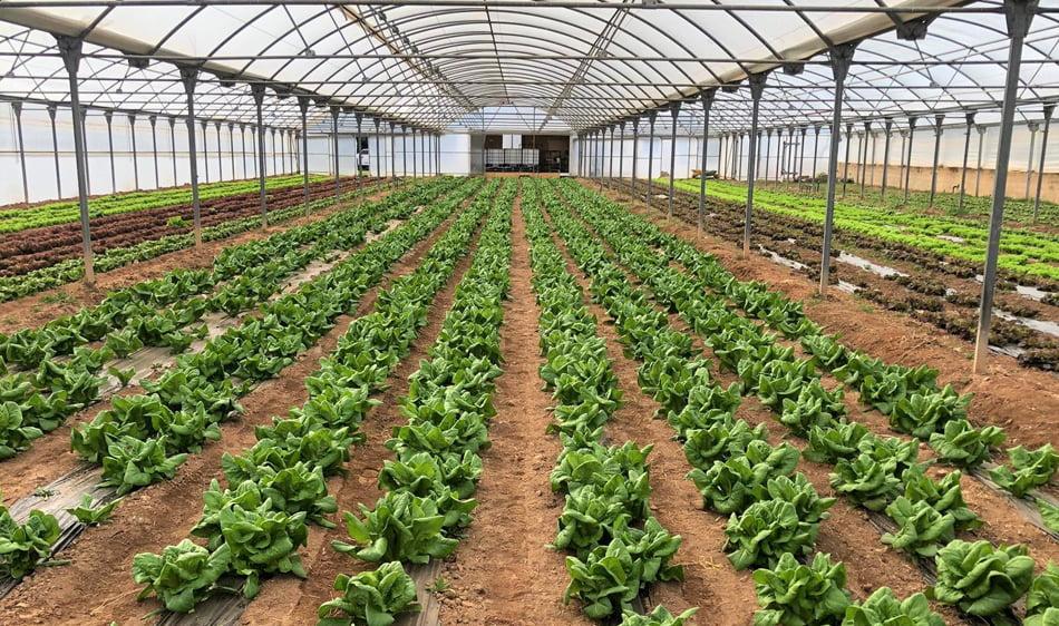 Agricultura acredita a Idai Nature para ensayos oficialmente reconocidos