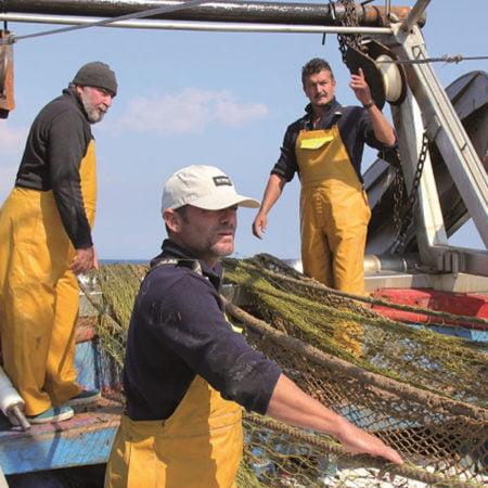 actividad.pesquera-cae 27%-en-castellon