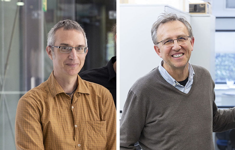 Imagen destacada El ICMol propone moléculas magnéticas para la computación cuántica