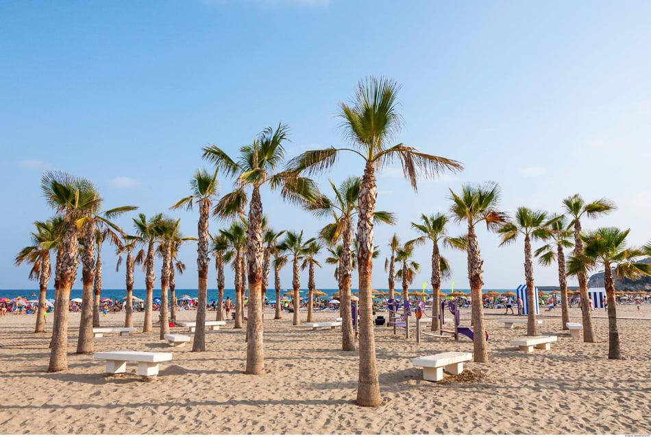 Imagen destacada Las banderas azules ondearán en 135 playas y 15 puertos valencianos