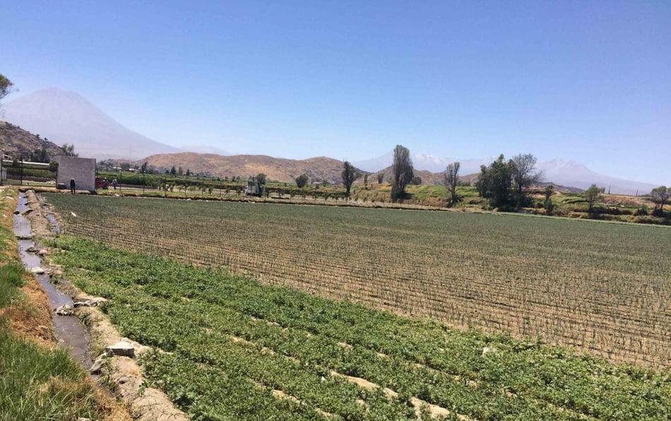 El portal misoficinas.es incorpora casi 200 ofertas de suelo en la Comunitat Valenciana