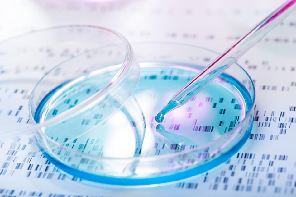 Imagen destacada Proyectos empresariales innovadores pueden solicitar préstamos subordinados del IVF