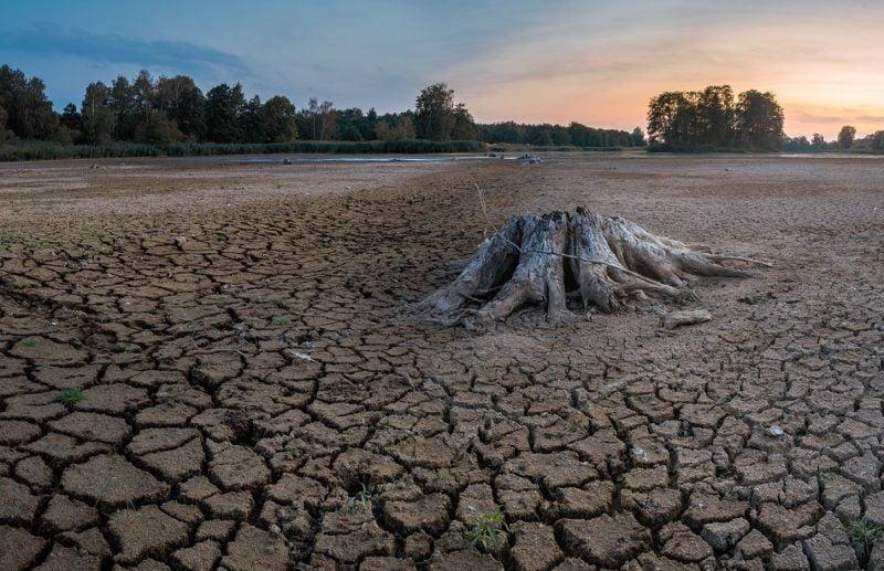 Efectos de una sequía