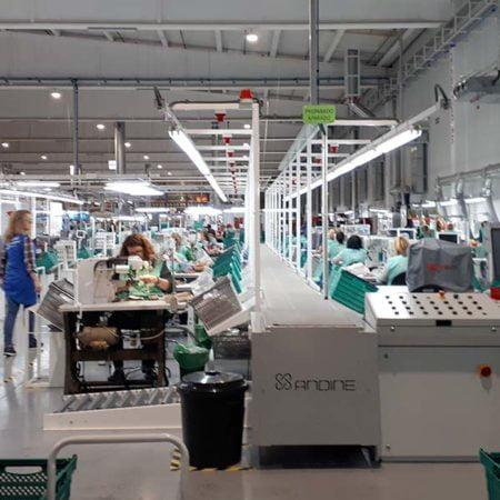 Pikolinos cierra todos sus centros de trabajo | Comunidad