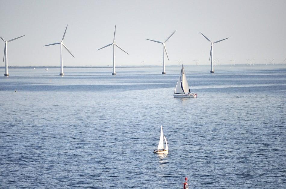 Imagen destacada Cómo se transformará el Puerto en 8 años: desde aerogeneradores a un arrecife artificial