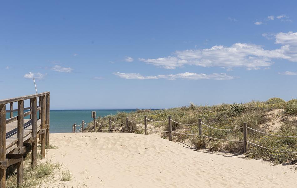 Turisme propone fragmentar las playas por sectores o horarios