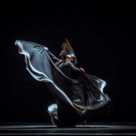 Flamenco Mediterráneo