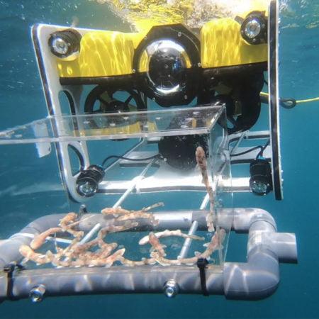 dron-submarino