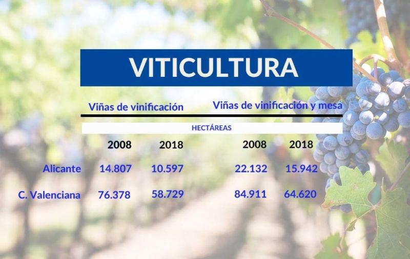 viticultura-grafica-comparativa