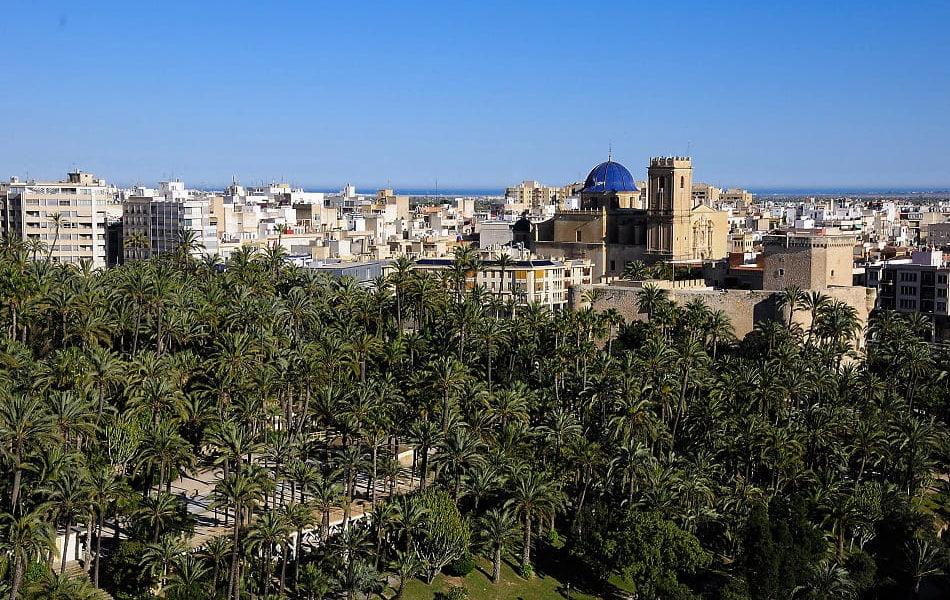 Elche alcanza una tasa de ocupación hotelera del 71,5% en noviembre