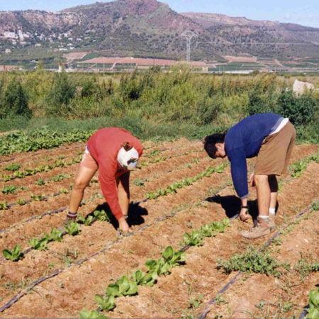 desarrollo-rural