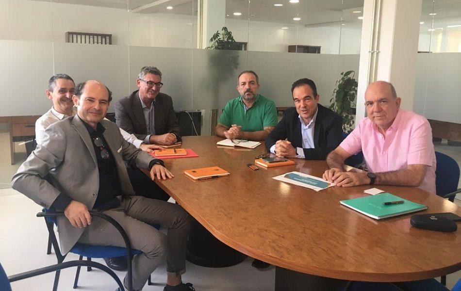 Imagen destacada Alicante y Fundación Caja Mediterráneo colaborarán en proyectos de sostenibilidad