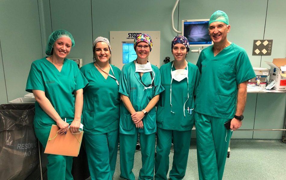 Imagen destacada La Fe realiza un tratamiento con células madre en la enfermedad de Crohn
