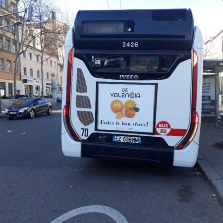 campaña-citricos-bus