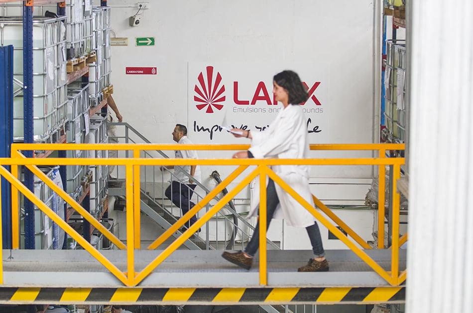 Laiex-planta