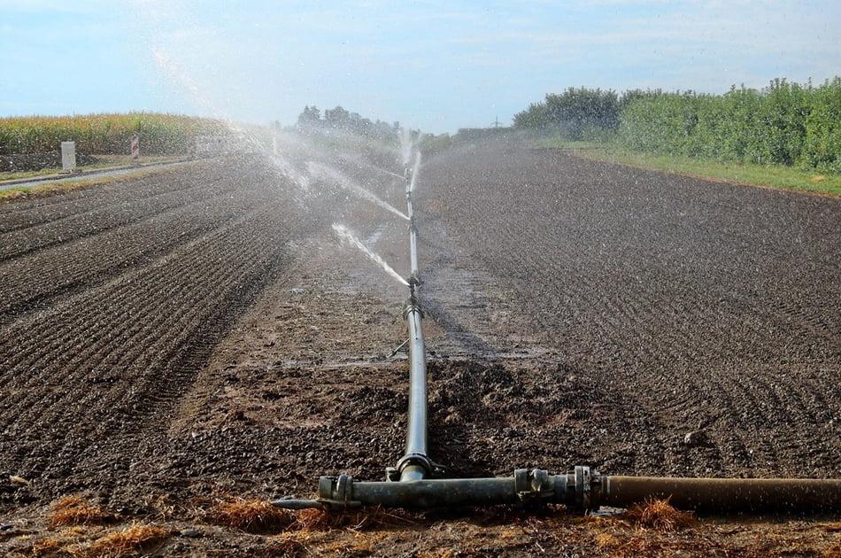 Imagen destacada Vielca Ingenieros supervisará sistemas de riego en propiedades agrícolas de Honduras