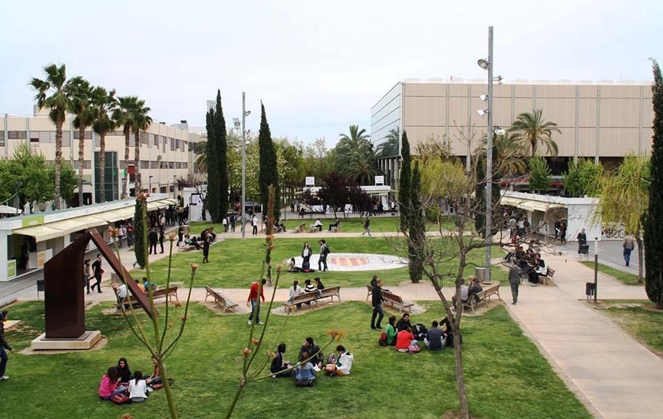 El Consell autoriza implantar enseñanzas universitarias oficiales de máster y doctorado