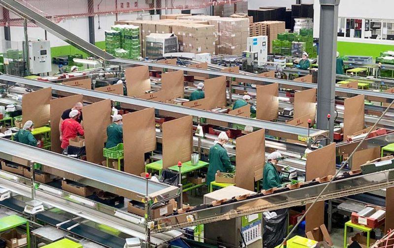 Hinojosa instala separadores de cartón en los puestos de trabajo