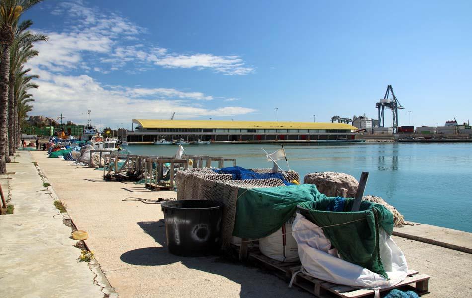 Imagen destacada El Puerto de Alicante agiliza la contratación de las obras de la dársena pesquera