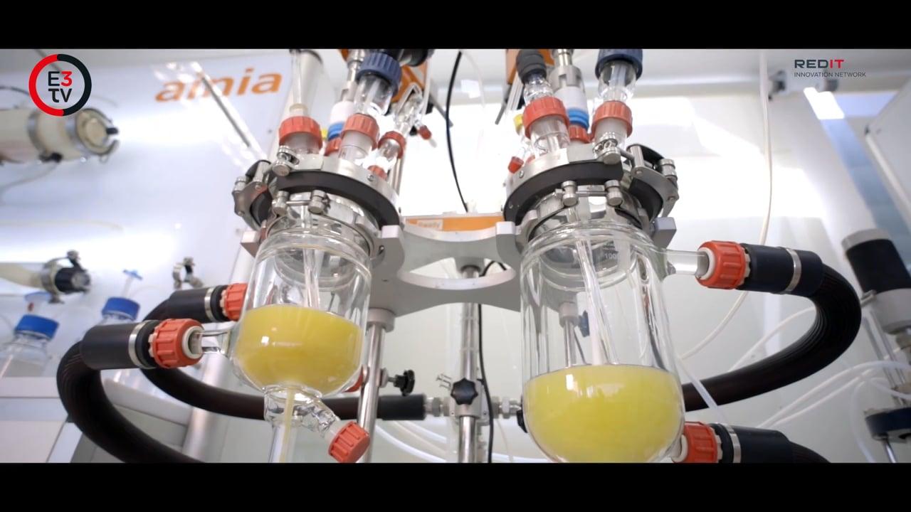 ¿Cómo puede mejorar la biotecnología nuestras vidas?