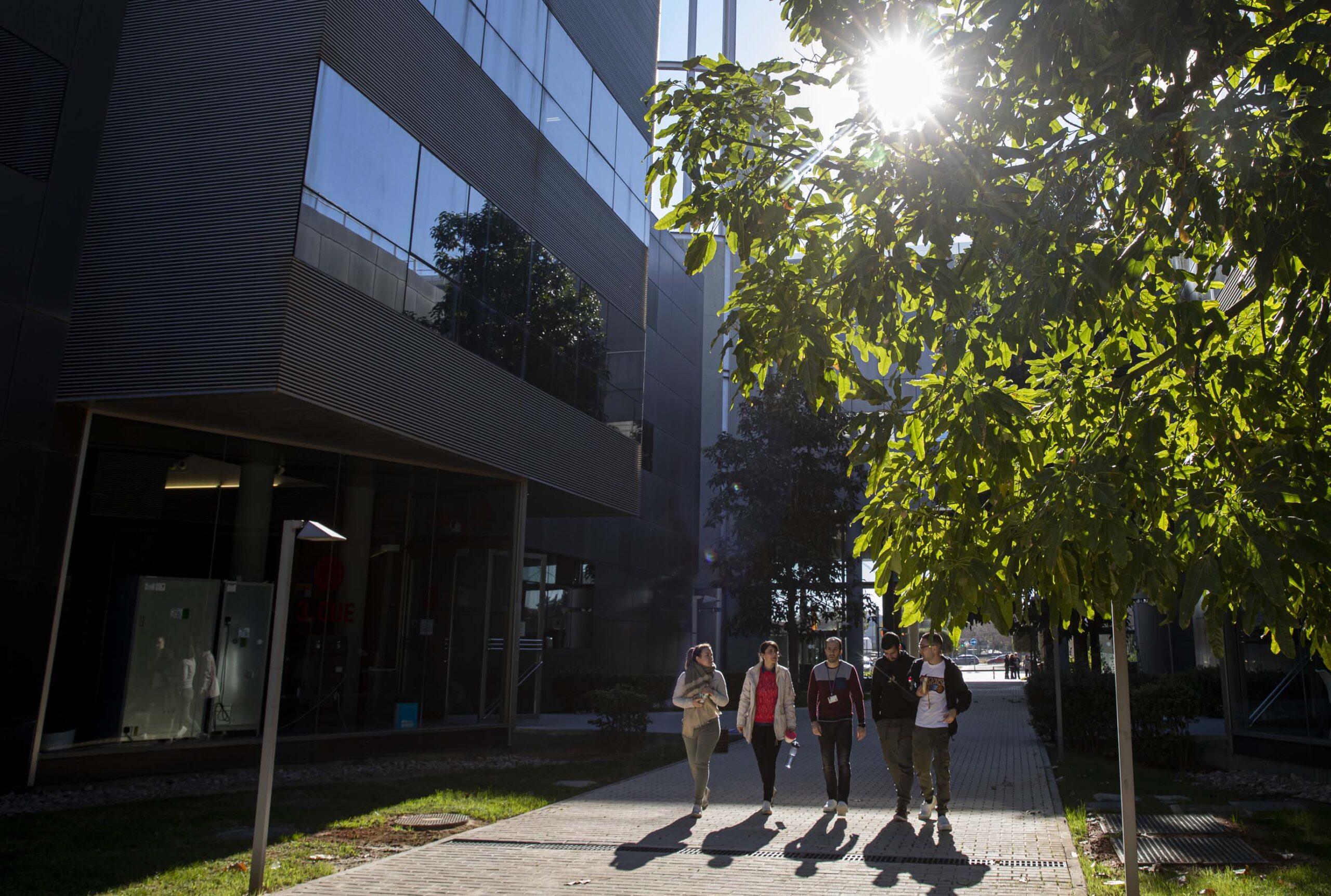 Imagen destacada El Parc Científic de la UV incubará a siete empresas innovadoras en VLC/Startup