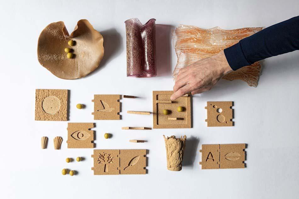 Imagen destacada Crean un biomaterial reutilizable y sostenible a partir de huesos de aceituna