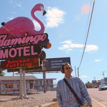 pink-flamingo-pelicula