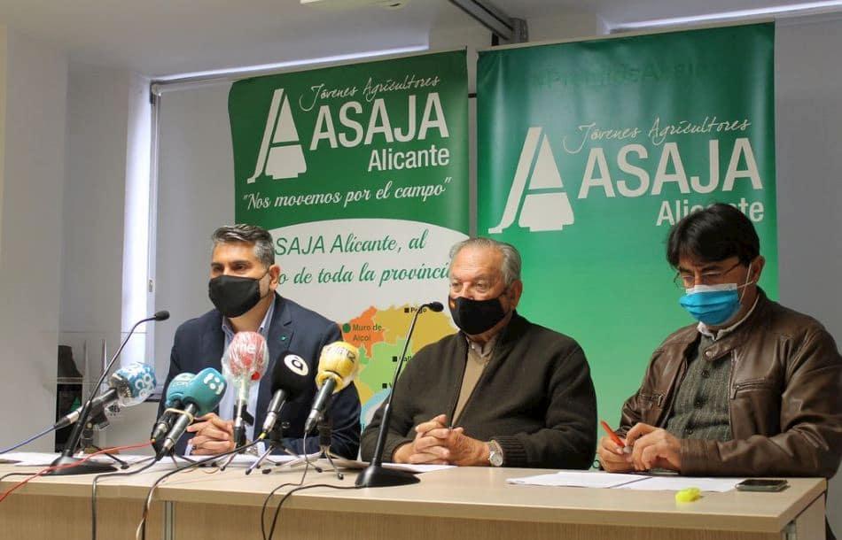 Ramón Espinosa, Eladio Aniorte y José Vicente Andreu, en una rueda de prensa en Alicante.