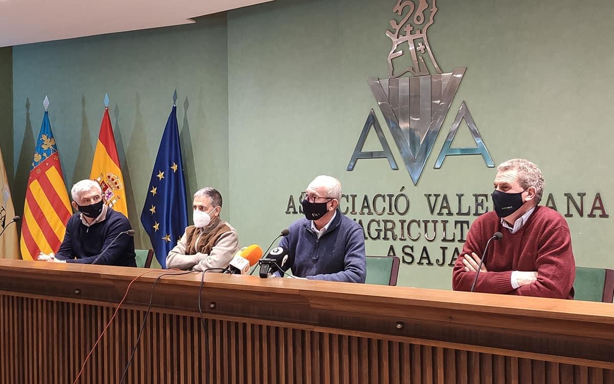 Representantes de AVA durante la presentación del balance de 2020