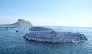 granja acuícola del Grupo Andrómeda, ahora Avramar