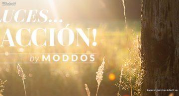 Moddos es una potente herramienta de marketing relacional para las empresas que conforman el Club en Valencia