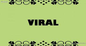 Cómo convertir en viral una campaña de marketing