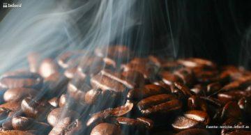 Cafés Marqués se dedica a elaboración de torrefactores de café