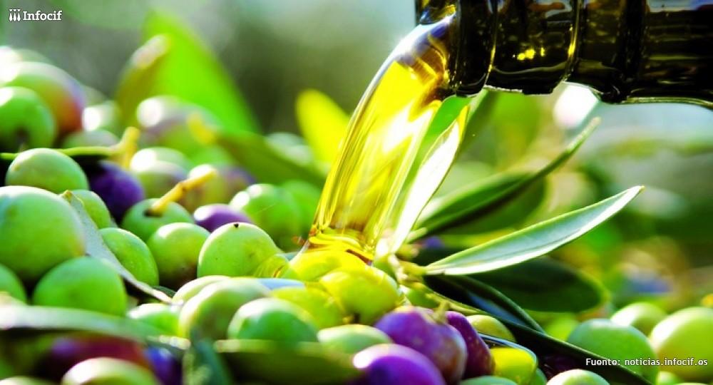 Muchos son los productos que se pueden crear a partir del aceite de oliva