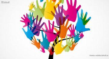 ¿Por qué crear una empresa social?