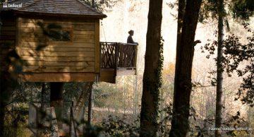 Una de las cabañas colgadas en los árboles