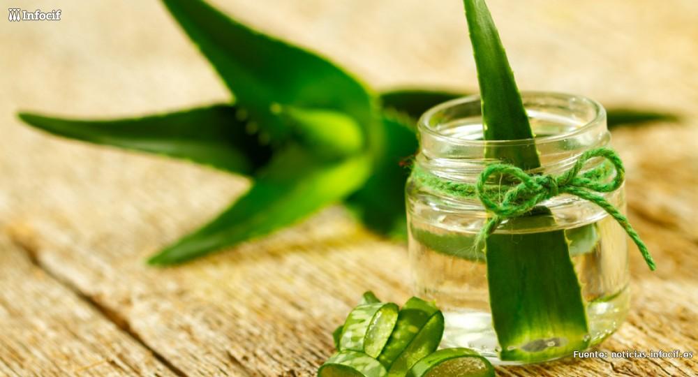Hispaloe es una empresa que produce y distribuye productos naturales ecológicos con aloe vera