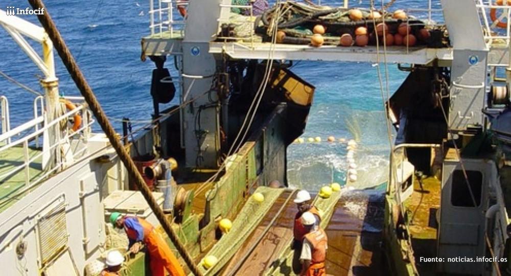 Pescanova presenta concurso de acreedores para cinco filiales